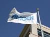 암젠, 美 어댑티브와 코로나19 의약품 개발 위한 전략적 제휴